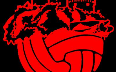 NK Desnić